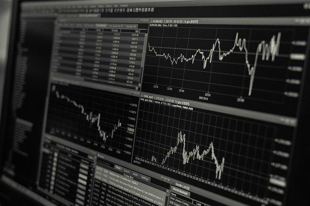 bevaka marknaden